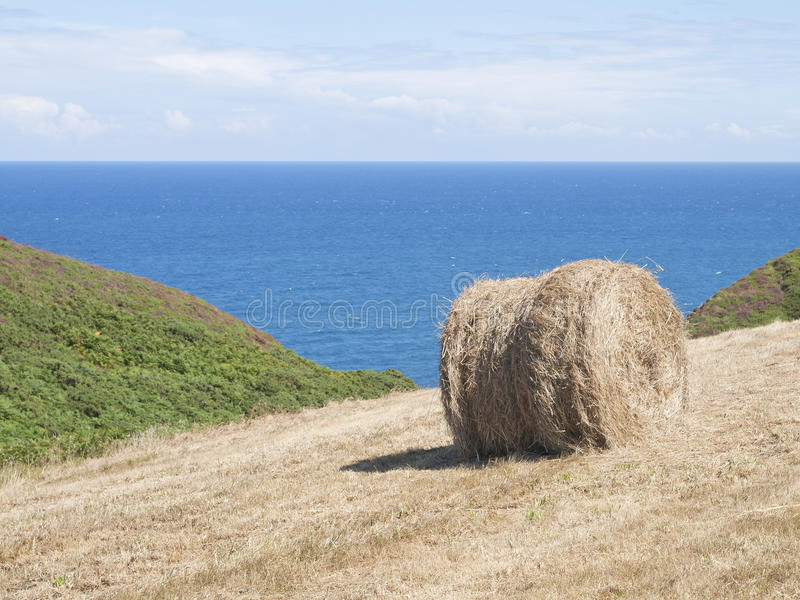 Cropland With Hay Bale Royalty Free Stock Photos