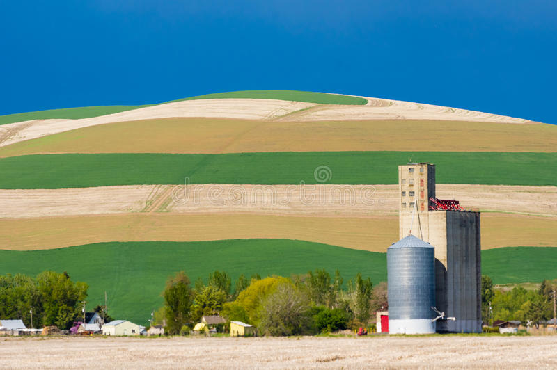 Cropped fields with grain silo. Growing crops in fields with grain silo stock images