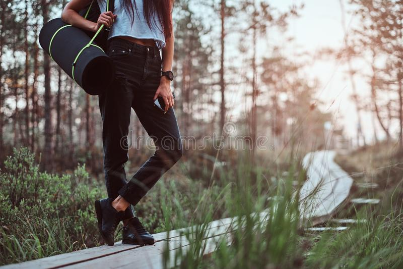 Cropped fotografia turystyczna dziewczyna trzyma smartphone podczas gdy stojący na drewnianym footpath w pięknym lesie obraz stock