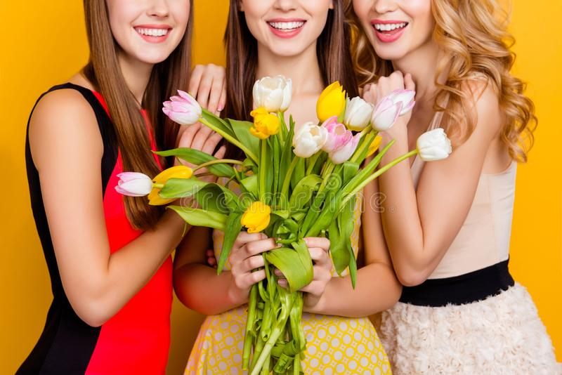 Cropped half face close up portrait of three pretty, attractive, charming girls with beaming smiles in dresses having bouquet royalty free stock photography