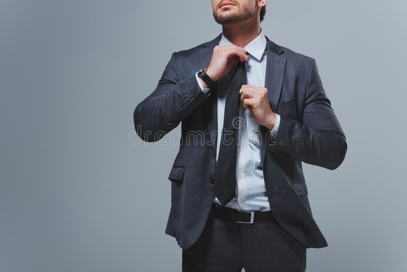 Cropped image of businessman fixing tie. Isolated on grey stock photo