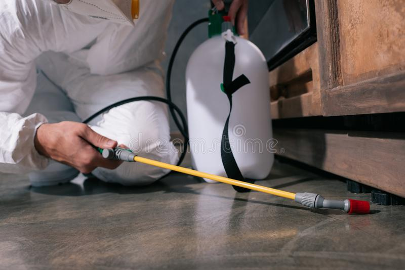 Cropped image of pest control worker spraying pesticides on floor. In kitchen stock photo