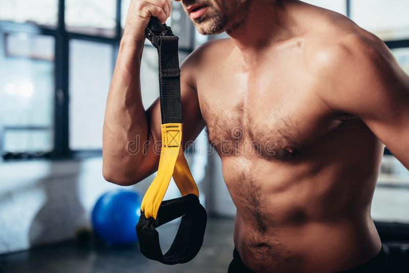 Cropped image of shirtless sportsman holding resistance bands. In gym royalty free stock photo