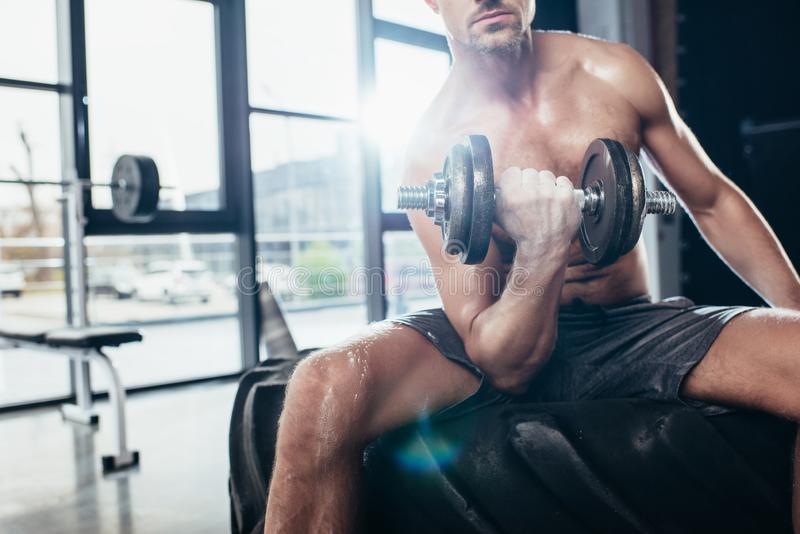 Cropped image of shirtless sportsman sitting on tire and exercising with. In gym dumbbell royalty free stock image