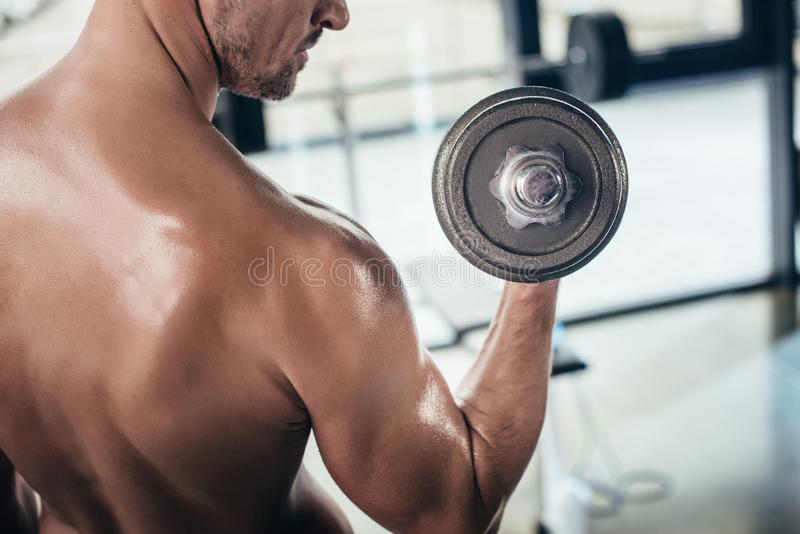 Cropped image of shirtless sportsman training with dumbbell. In gym royalty free stock photography