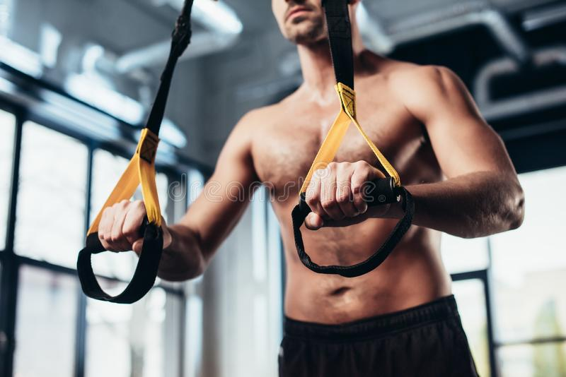 Cropped image of shirtless sportsman training with resistance bands. In gym royalty free stock photography