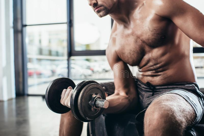 Cropped image of sweaty shirtless sportsman sitting on tire and exercising with. In gym dumbbell stock images
