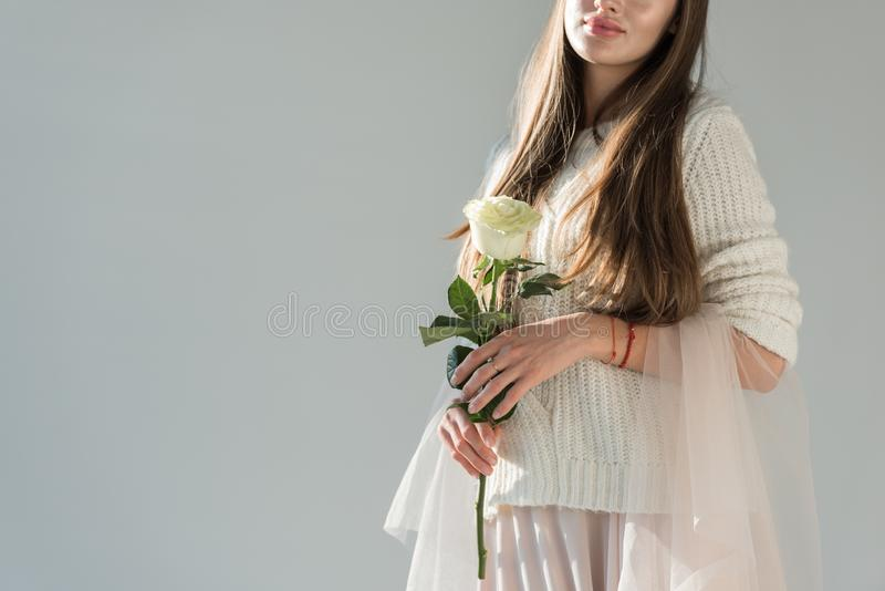 Cropped image of woman in fashionable winter outfit holding white rose isolated. On grey royalty free stock photos