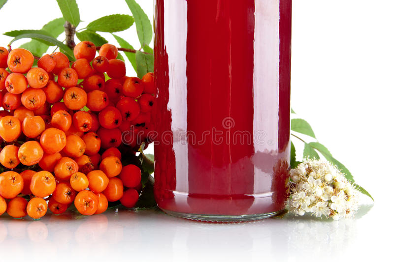 Cropped orange ash-berry with jar of juice on white. Studio shot of cropped orange ash-berry with blossom, green leaves and jar of juice of rowanberry on white stock photos