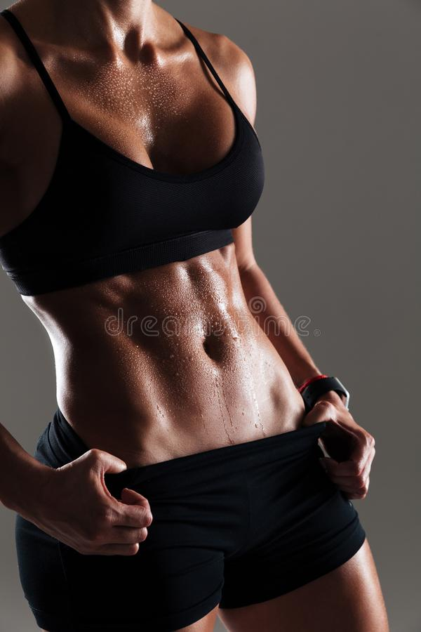 Cropped photo of amazing young sports woman body stock image