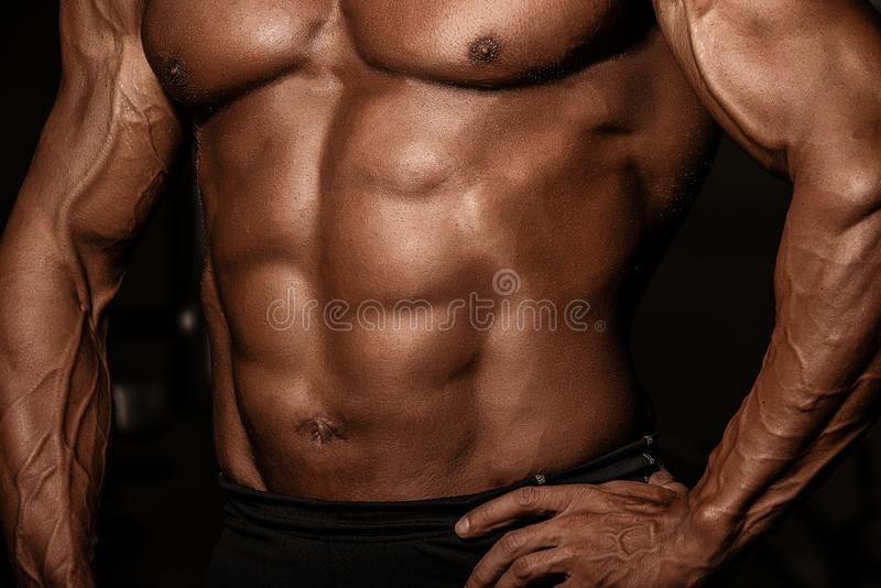 Cropped picture of muscular male tanned torso of bodybuilder. Strong athlete man with perfect abs, shoulders, biceps, triceps and stock image