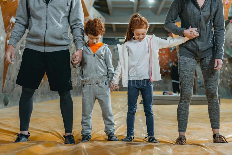 Cropped shot of family with kids holding hands and standing in a row. At gym royalty free stock image