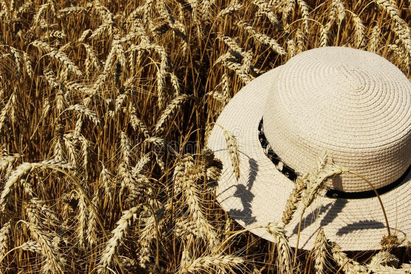 Cropped shot of a hat in wheat meadow. Abstract rural background. Beige hat lying on a dry spikelets of wheat. Abstract countryside background stock photos