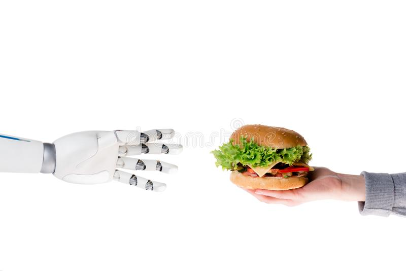 Cropped shot of human giving burger to robot. Isolated on white stock photos
