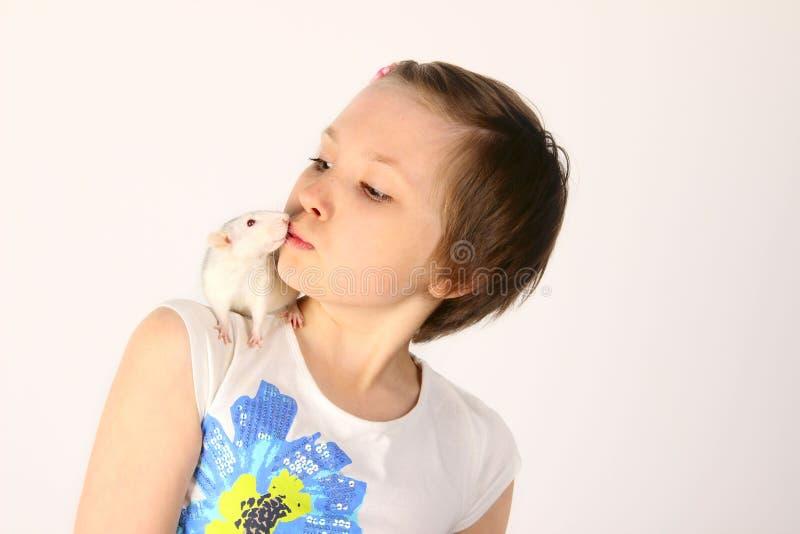 Cropped strzał śliczna mała dziewczynka i jej zwierzę domowe Mała dziewczynka i szczur obrazy royalty free