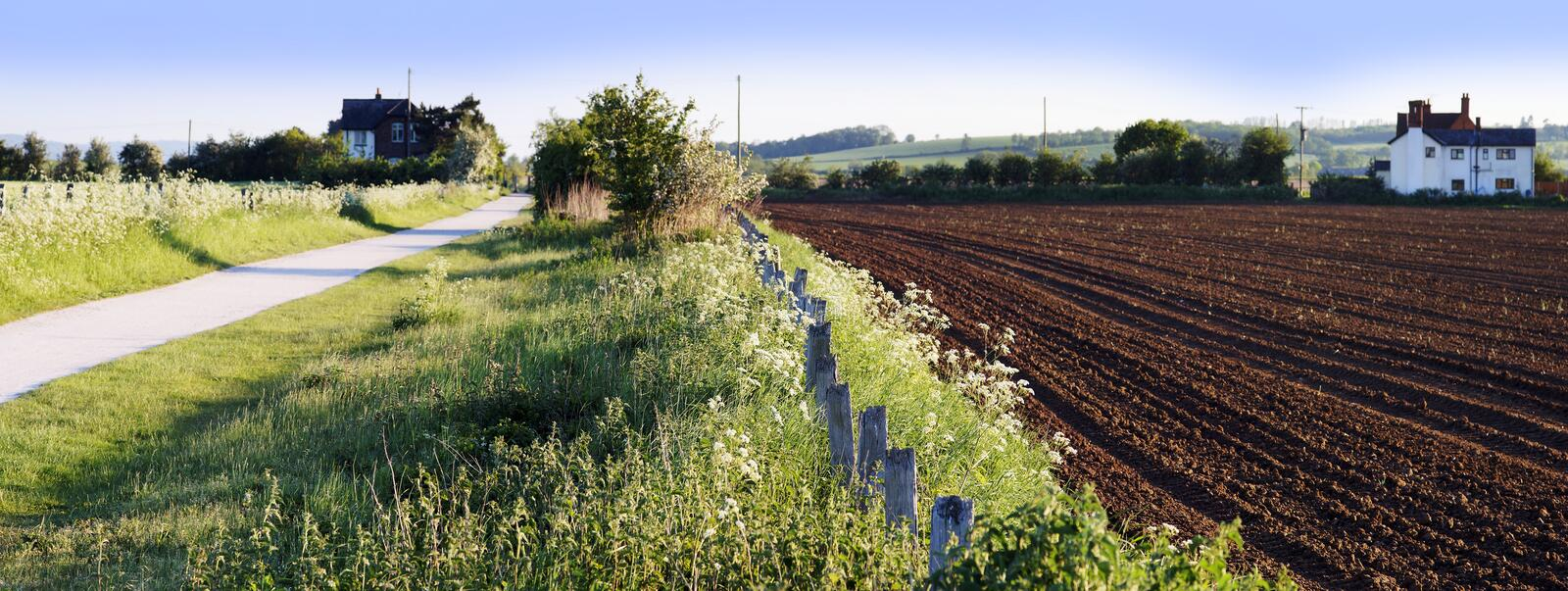 Crops countryside stock images