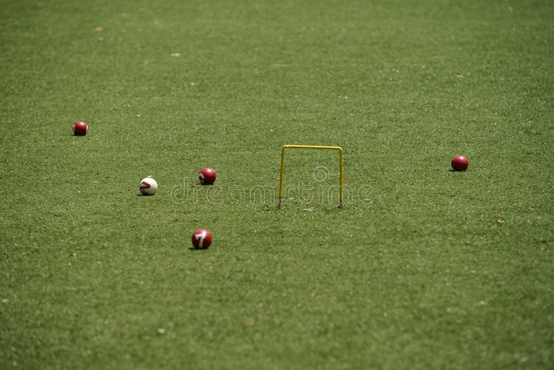 Croquetspel stock fotografie