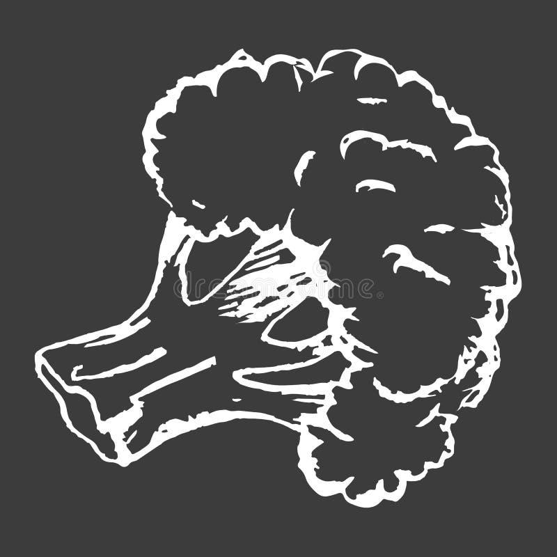 Croquis blanc d'isolement par brocoli sain d'ensemble illustration de vecteur
