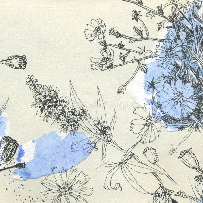 Croquis botaniques illustration libre de droits