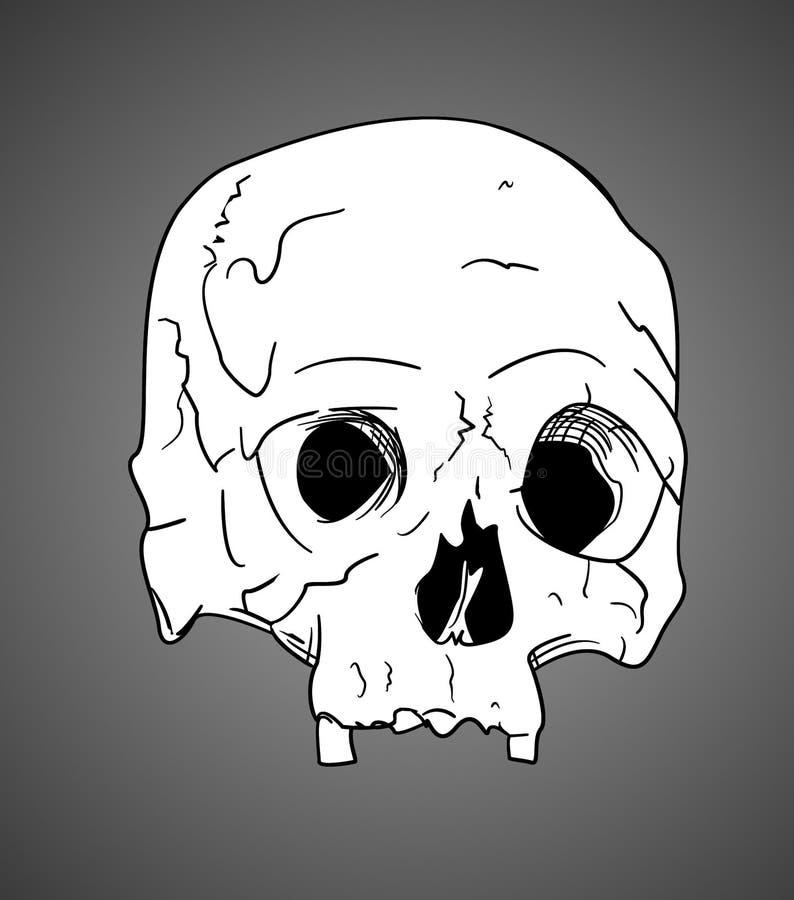 Croquis brisé artistique de crâne - conception de trame des textes illustration de vecteur