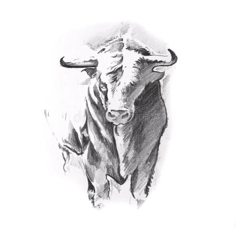 Croquis d'art de tatouage, taureau illustration libre de droits