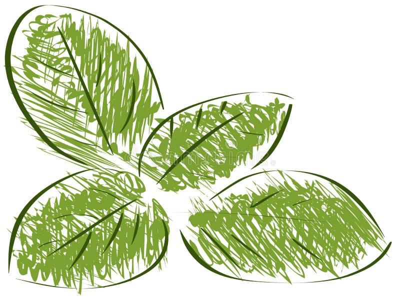 Croquis d'isolement de basilic illustration de vecteur