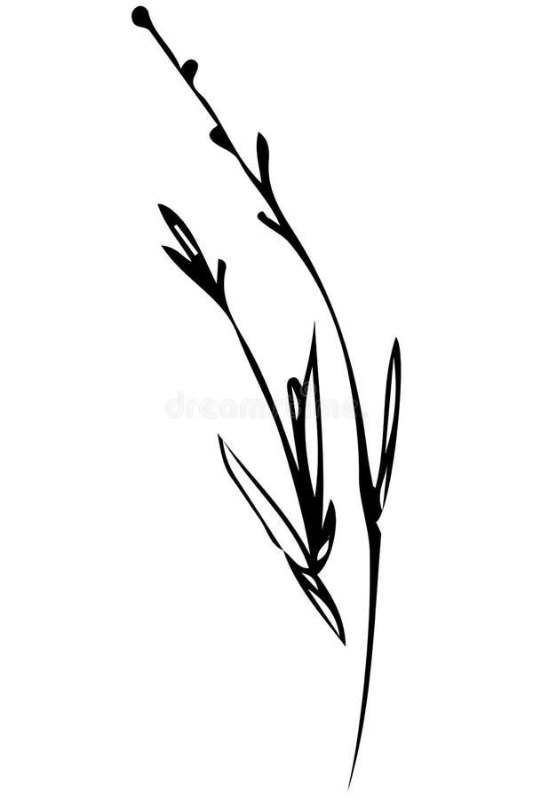 Croquis d'une tige d'herbe balançant dans le vent illustration de vecteur
