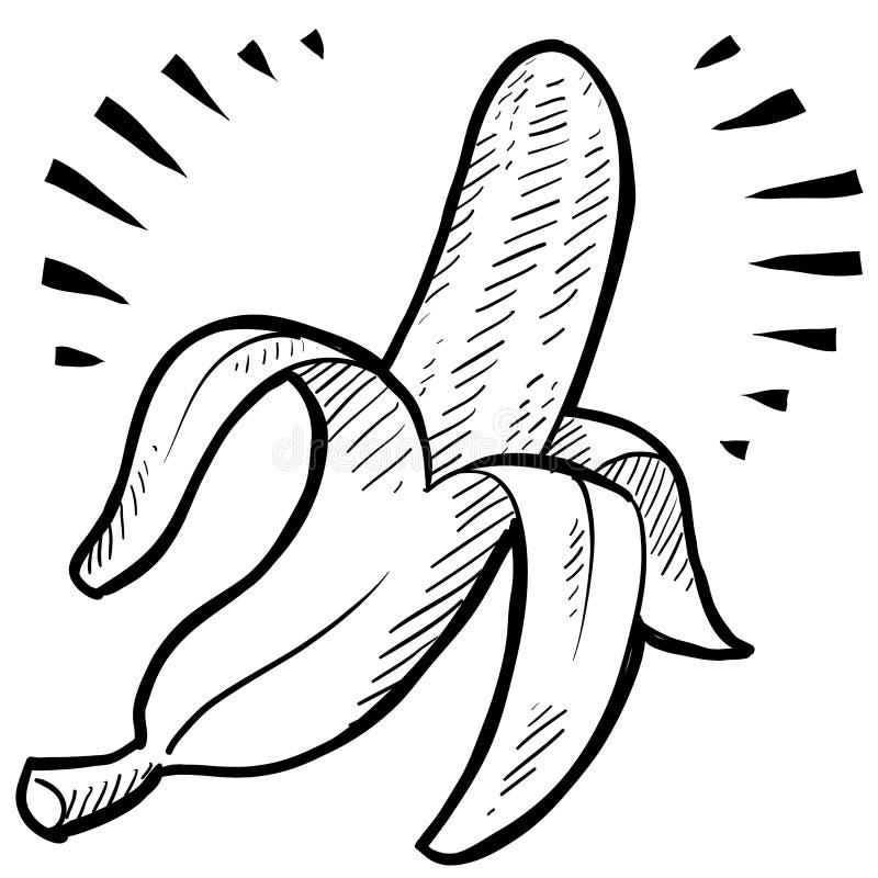 Croquis de banane illustration stock