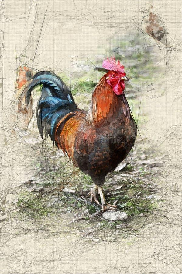 Croquis de coq illustration stock