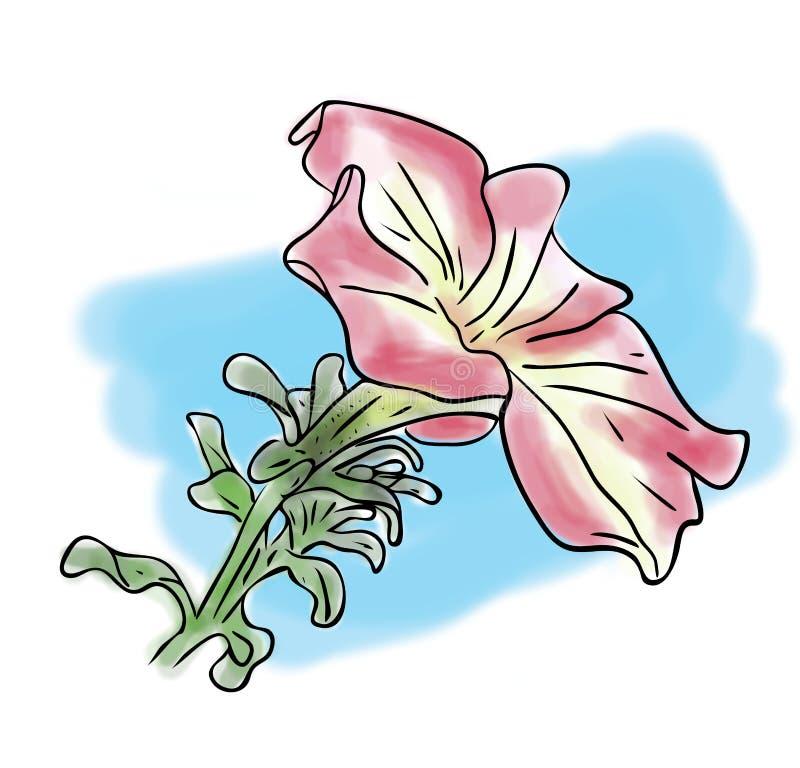 croquis de couleur de rose fleur à quatre heures avec des feuilles sur le fond bleu, dessin peint à la main d'ensemble illustration libre de droits