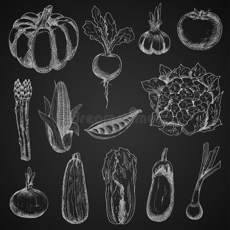Croquis de craie de légumes de ferme réglés illustration libre de droits