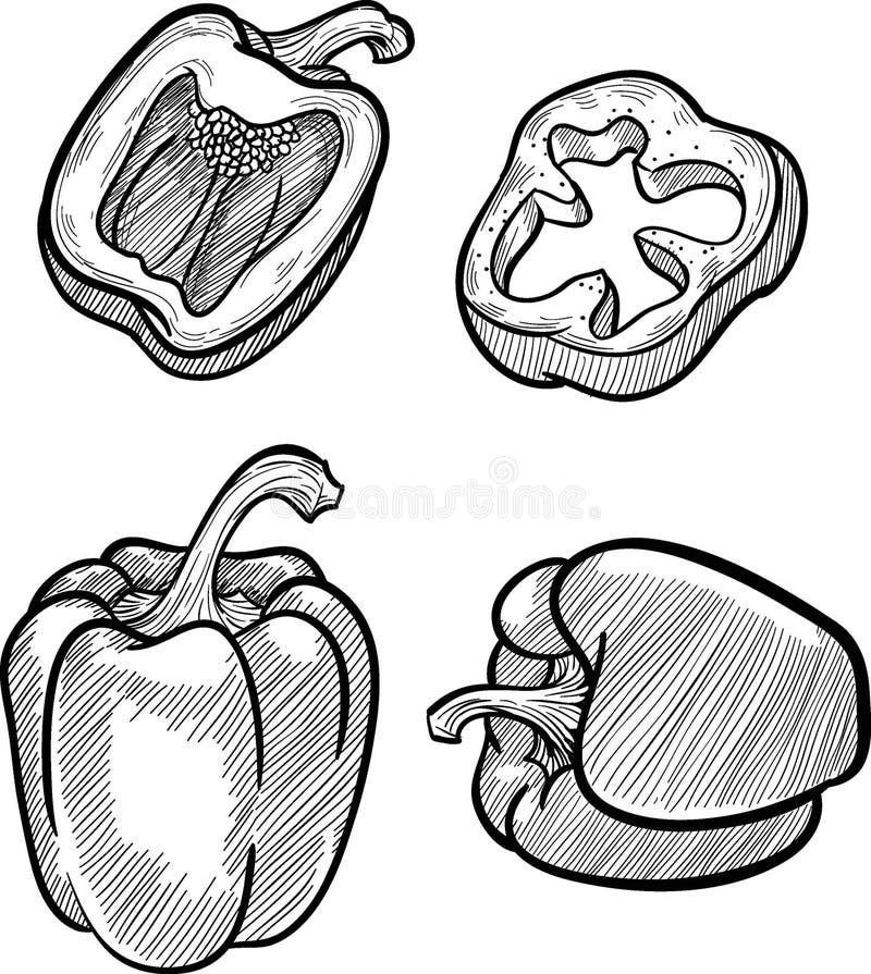 Croquis de Digital de paprika illustration libre de droits