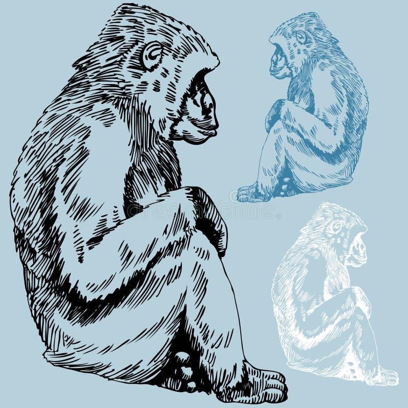 Croquis de gorille/singe illustration libre de droits