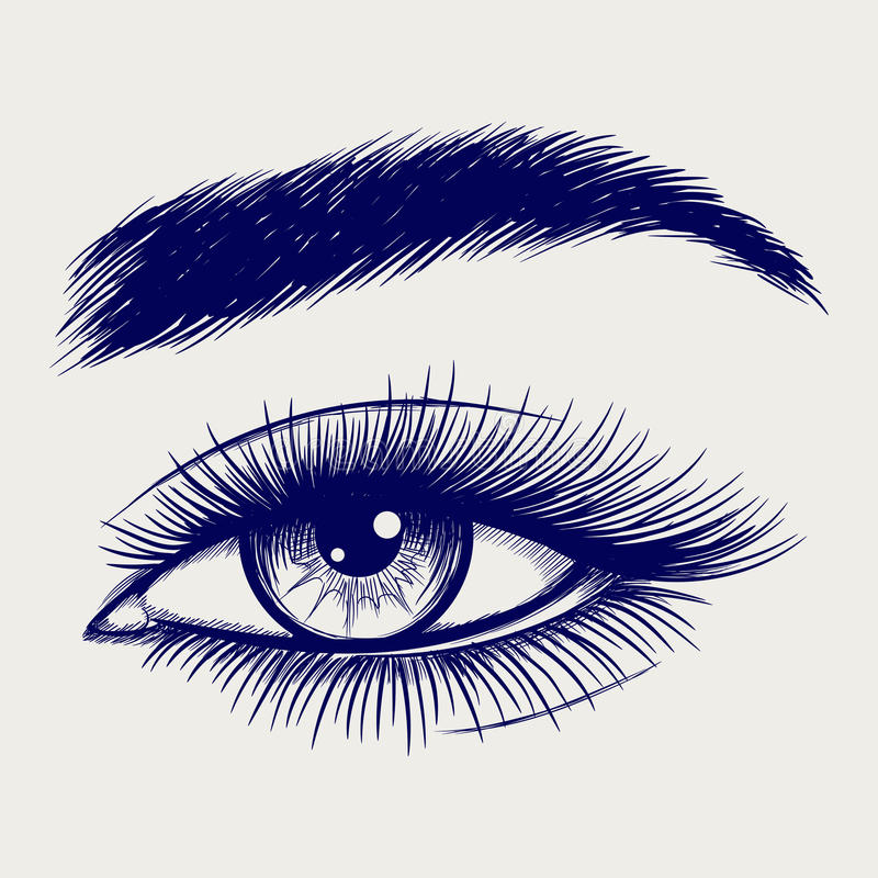 Croquis de stylo de bel oeil femelle illustration stock