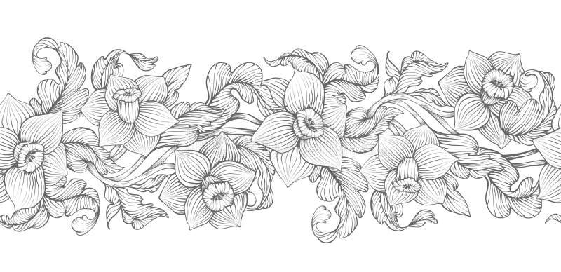 Croquis dense d'ensemble de narcisse de jonquilles illustration stock