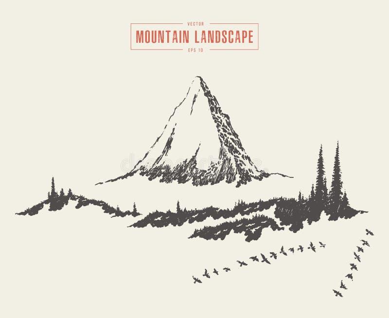 Croquis dessiné par vecteur de forêt de sapin de paysage de montagne illustration libre de droits