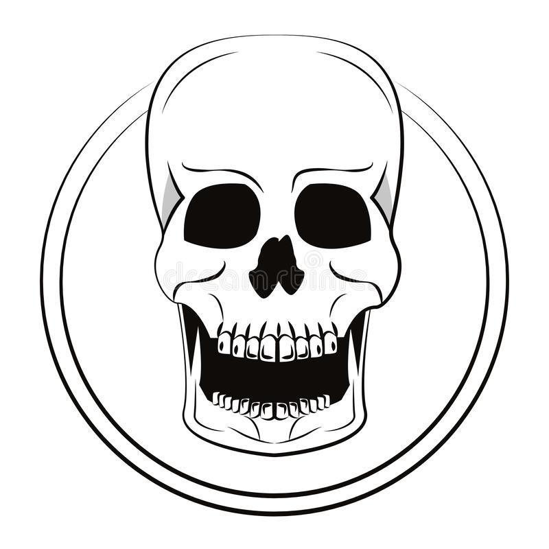 Croquis frais de crâne illustration stock