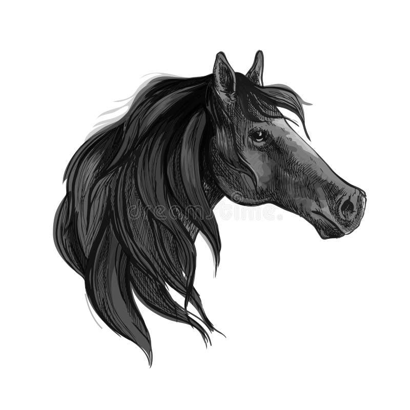 Download Croquis Noir De Cheval De Jument Arabe Illustration de Vecteur - Illustration du horseback, logo: 76079609