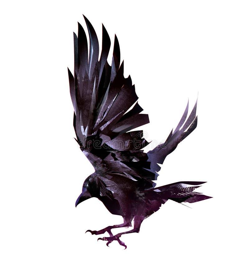 Croquis réaliste d'isolement d'un oiseau de vol des corneilles illustration de vecteur