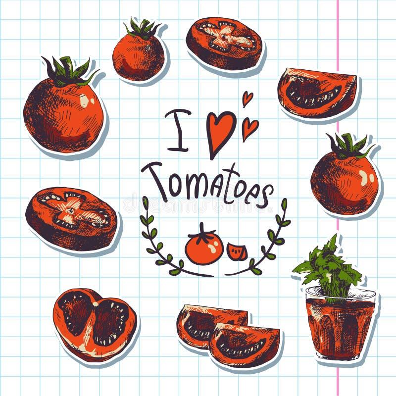 Croquis tiré par la main des légumes, tomates illustration stock