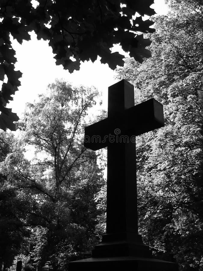 Cross stock photos