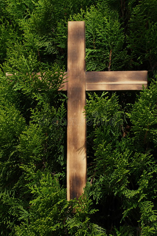 Cross with conifer background stock photography