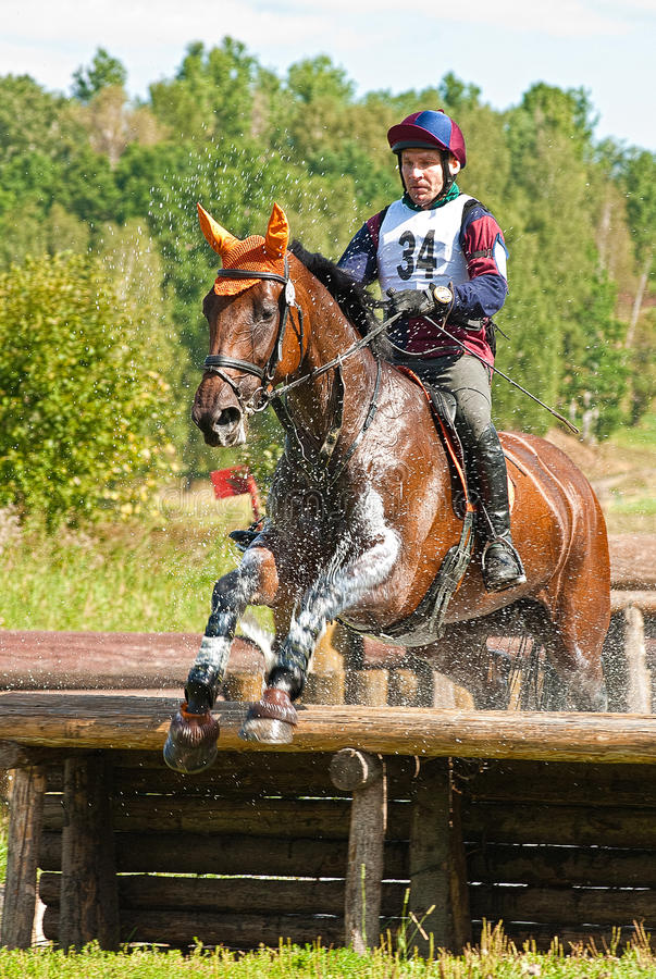 Cross-Country, horseman jumping in water drops stock image
