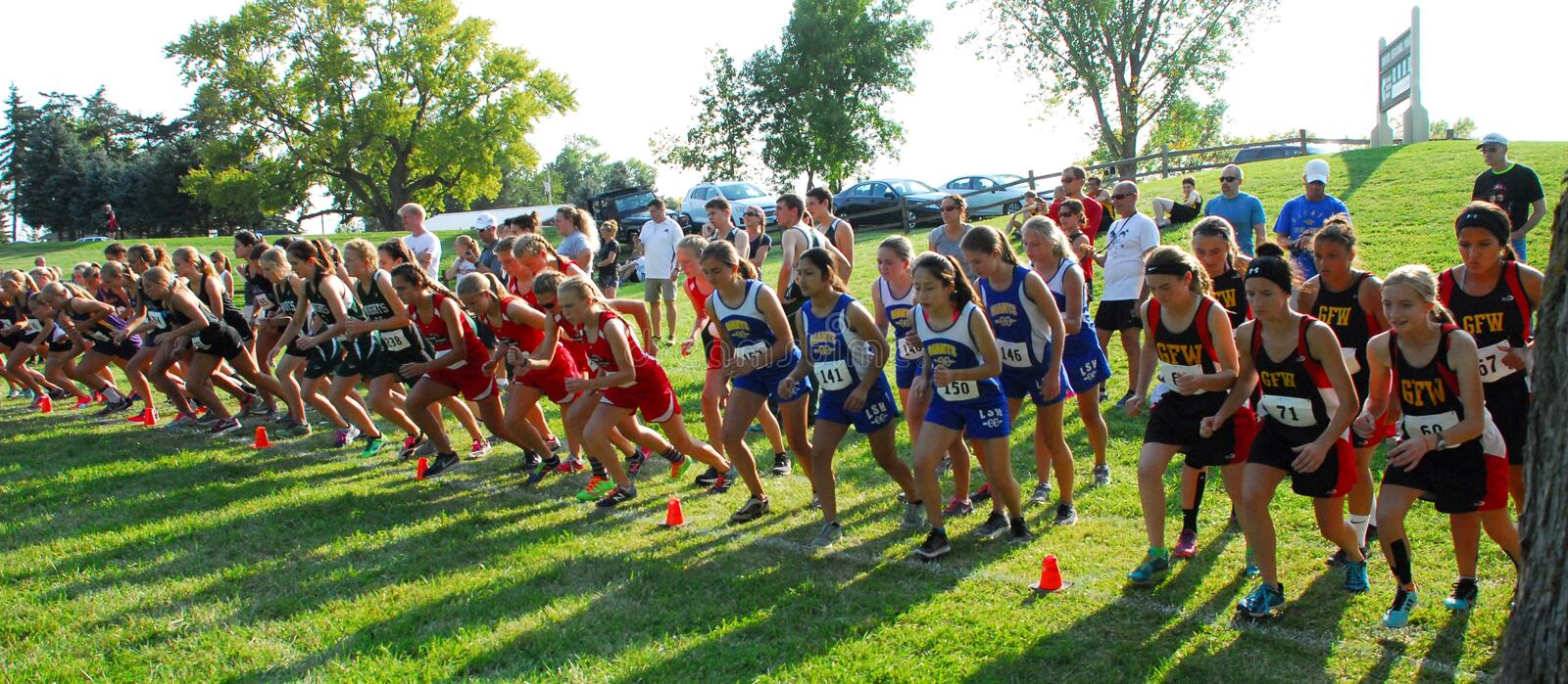 Cross country teams line up at the starting line stock image