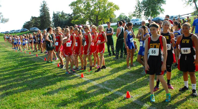 Cross country teams gather at the starting line stock images