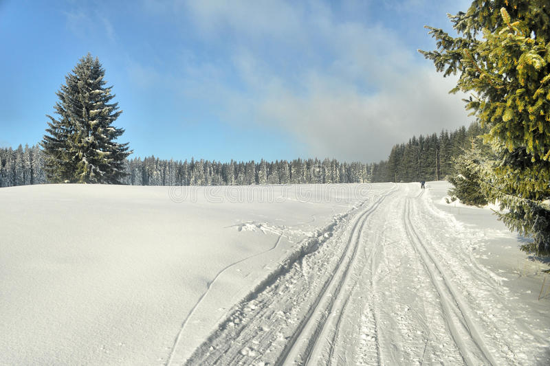 Download Cross-country ski stock photo. Image of shadow, blue - 13440318