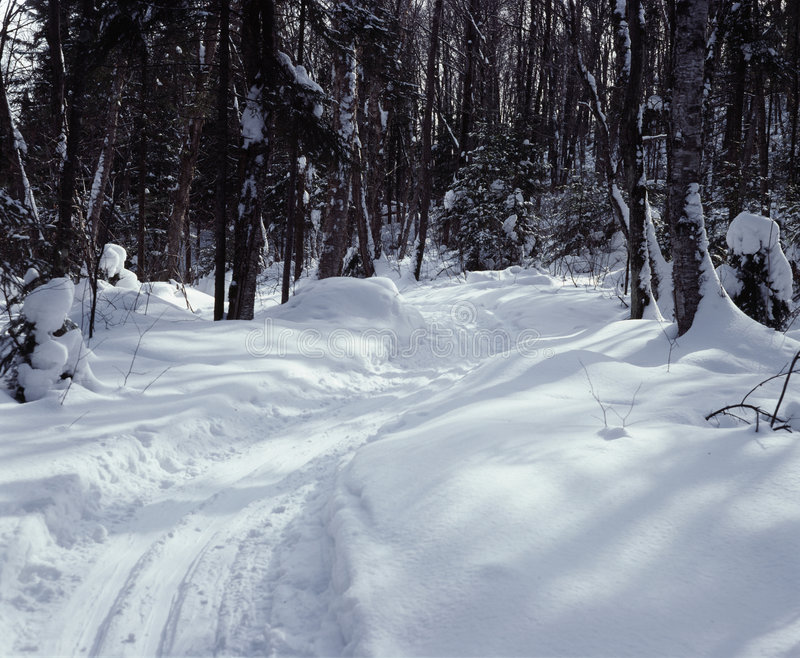 Cross Country Ski Trail Ontario Canada royalty free stock image