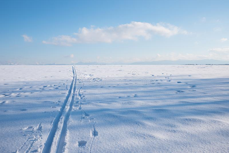 Cross-country ski trail in wintry landscape royalty free stock photo