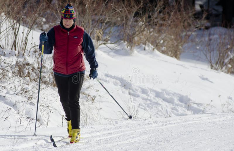 Download Cross Country Skier editorial stock photo. Image of nature - 24483003