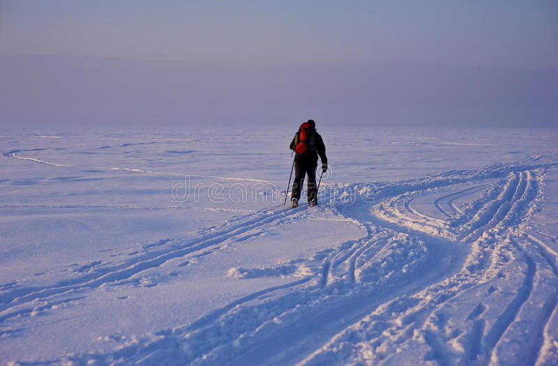 Download Cross-country Skier In Deep Tracks Stock Photo - Image: 17980358